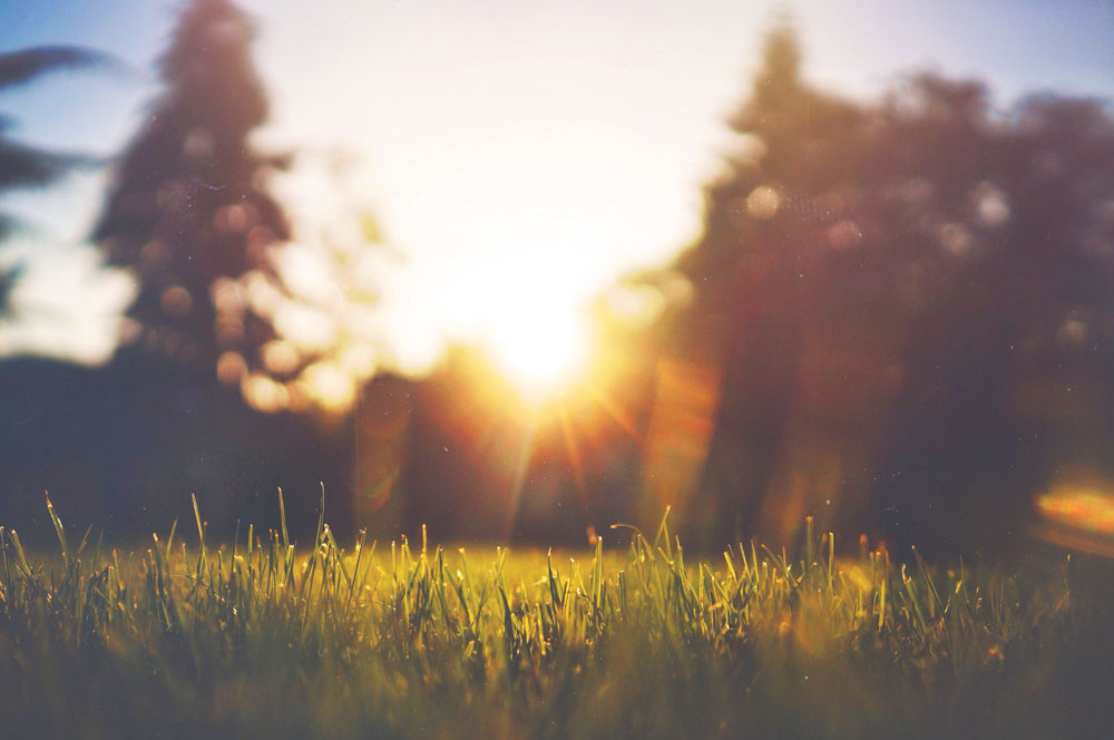 Råd vid värmebölja – Omsorgsgruppen